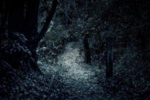 『山奥のクネクネ』|洒落怖名作まとめ【山にまつわる怖い話】