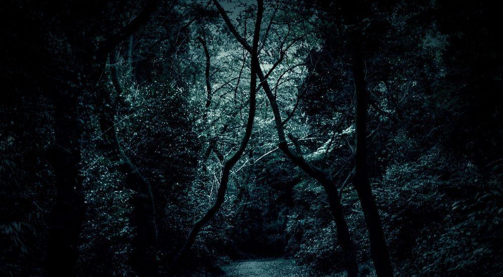 『廃屋探検』|洒落怖名作まとめ【短編・中編】