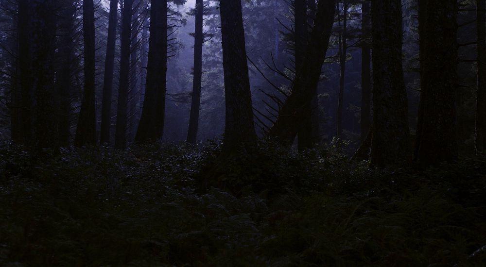 ゾッとした怖い話『ここにいるよ』など 全5話|洒落にならない怖い話【短編・オカルト】