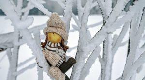 『人形マニア』人形にまつわる怖い話【2】|厳選 洒落怖名作まとめ