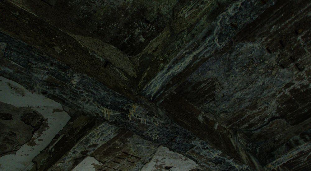 『逆吸血鬼と下水処理場跡』【逆吸血鬼シリーズ - 2】|洒落怖名作まとめ【ホラーテラーシリーズ】