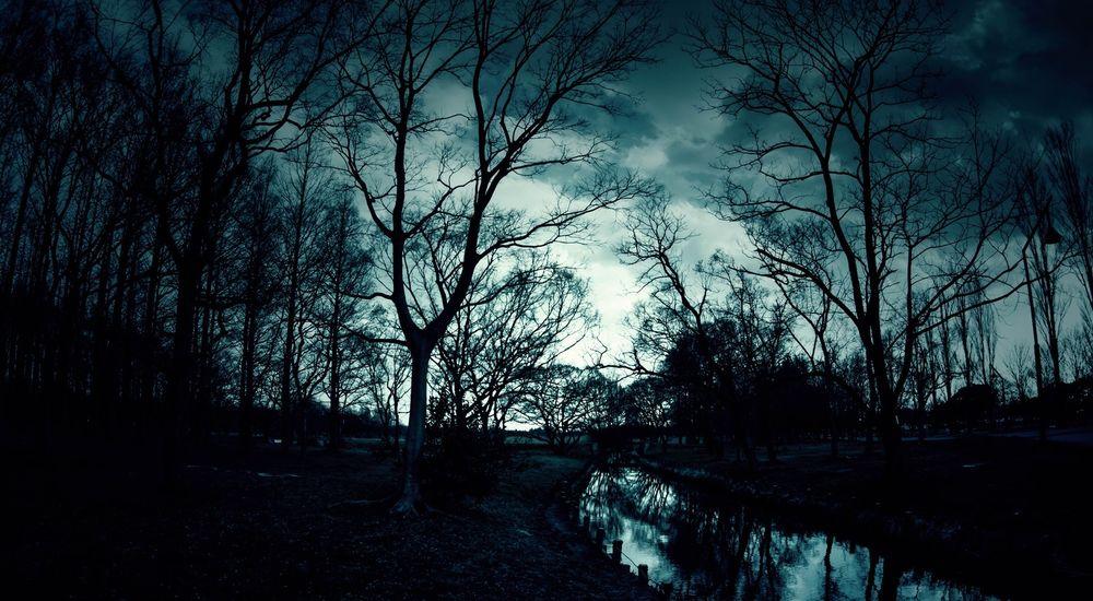 『逆吸血鬼と合わせ鏡』【逆吸血鬼シリーズ - 3】|洒落怖名作まとめ【ホラーテラーシリーズ】